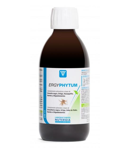 Zumo arandano negro 330 ml bio