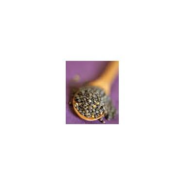 LENTEJAS de PUY 500 g. Biomix